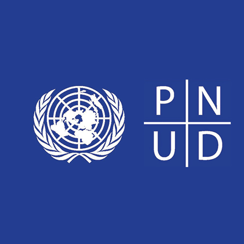 PNUD recrute un expert national en communication