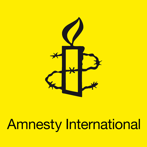 (offre en anglais) Amnesty International recrute regional researchers