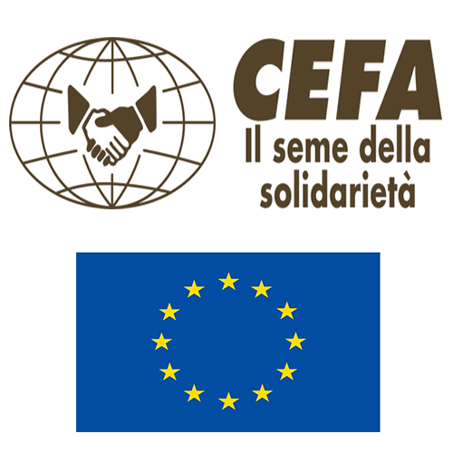 CEFA recrute un(e) assistant(e) financier(e) et administratif(ve)