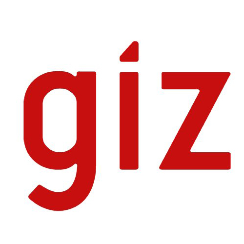GIZ recrute un(e) Expert(e) Technique Informatique