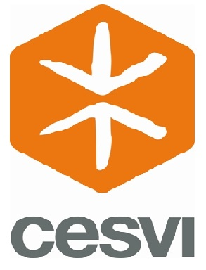 (Offre en anglais) CESVI recrute Financial and Liaison Officer (National position for Tunisian)