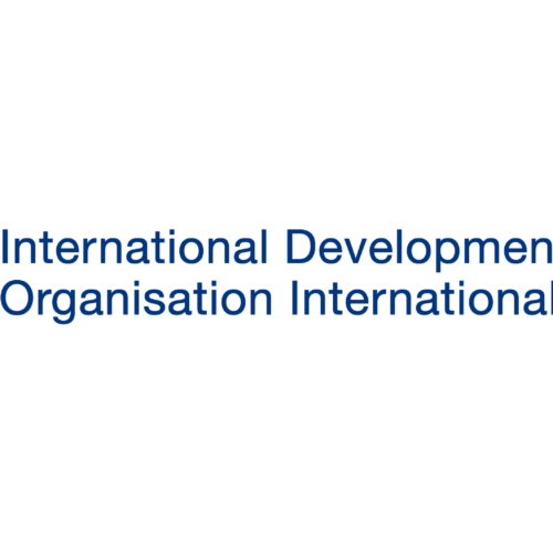 The International Development Law Organization (IDLO) recrute Program Associate