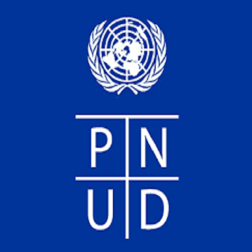 PNUD recrute un(e) Responsable de l'Exploration