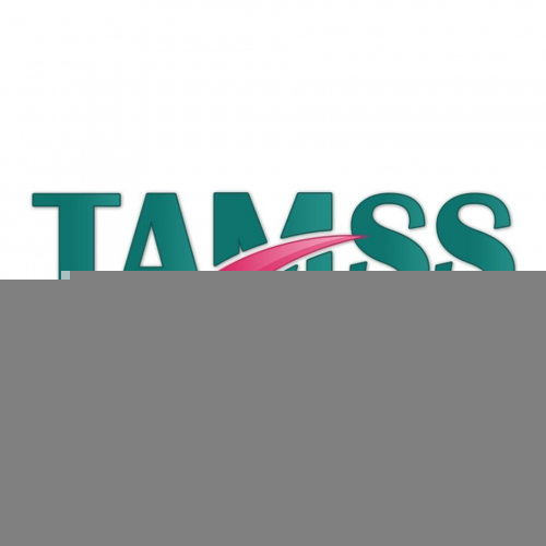 Project Manager – TAMSS